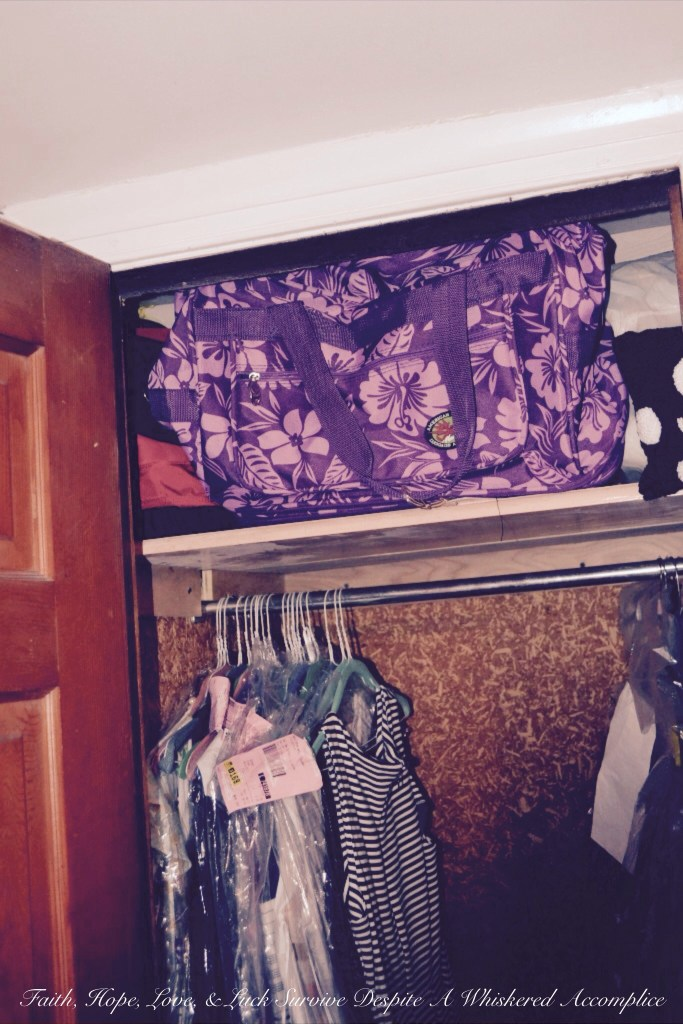 """Grandma's Room"" Closet Revamp 