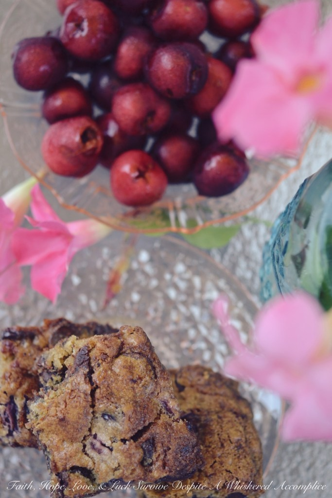 Moist Cherry Chocolate Cake Bars | Faith, Hope, Love, and Luck Survive Despite a Whiskered Accomplice