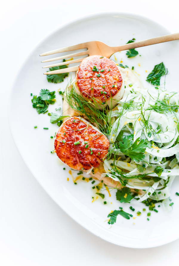 Seared Scallops with Hummus and Shaved Fennel Salad | Faith, Hope, Love, and Luck Survive Despite a Whiskered Accomplice