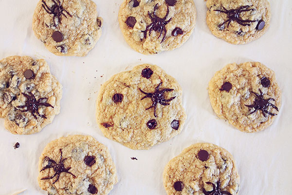 Spider Chocolate Chip Cookies   Faith, Hope, Love, and Luck Survive Despite a Whiskered Accomplice