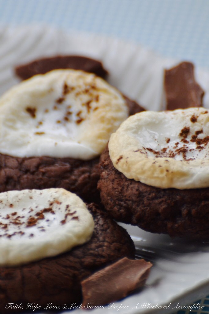 Hot Chocolate Brownie Cookies | Faith, Hope, Love, and Luck Survive Despite a Whiskered Accomplice