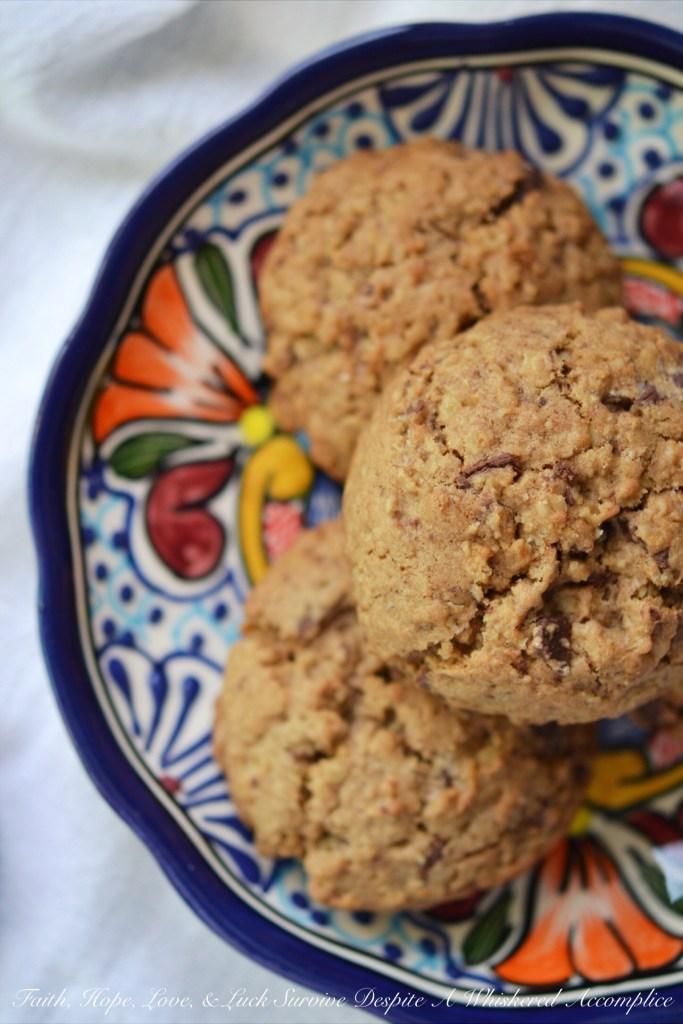 Fat Mexican Reindeer Oatmeal Cookies| Faith, Hope, Love, and Luck Survive Despite a Whiskered Accomplice