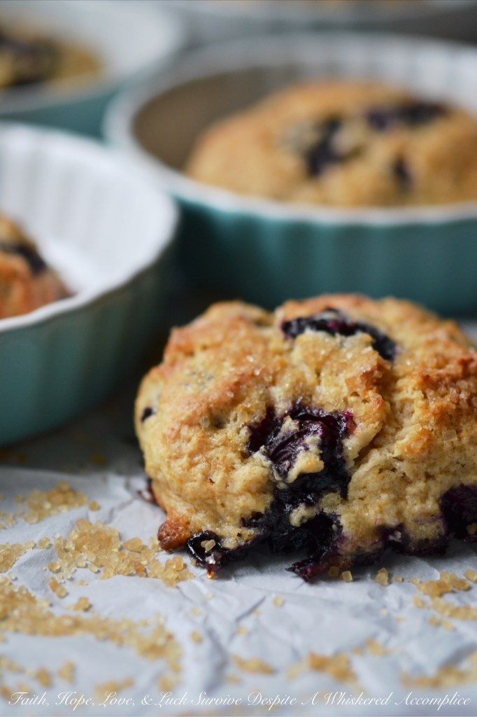 Blueberry Something Special Drop Scones | Faith, Hope, Love, and Luck Survive Despite a Whiskered Accomplice