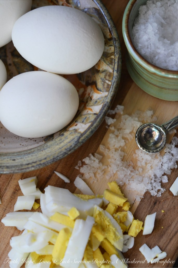Crockpot Hard-Boiled Eggs | Faith, Hope, Love, & Luck Survive Despite a Whiskered Accomplice