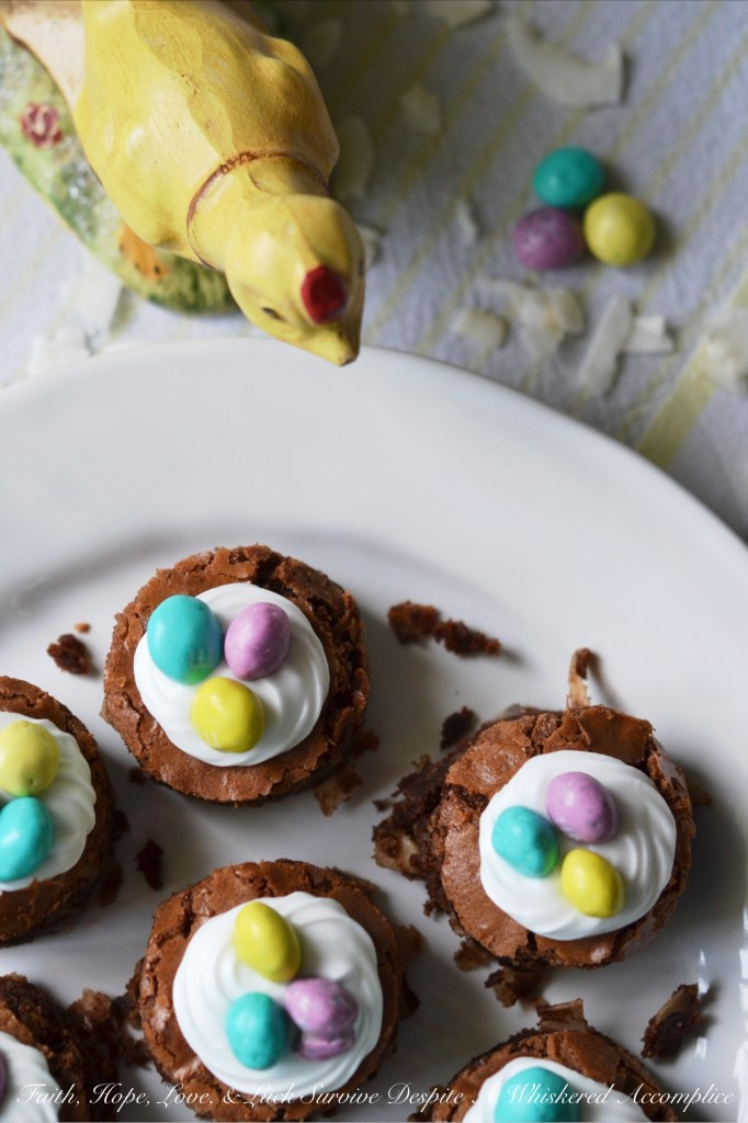 Coconut Brownie Nests | Faith, Hope, Love, and Luck Survive Despite a Whiskered Accomplice
