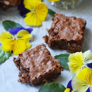 Instagram - Milk Chocolate Coconut Brownies | Faith, Hope, Love, and Luck Survive Despite a Whiskered Accomplice