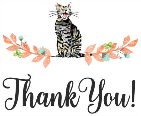 Thank You | Faith, Hope,Love, and Luck Survive Despite a Whiskered Accomplice