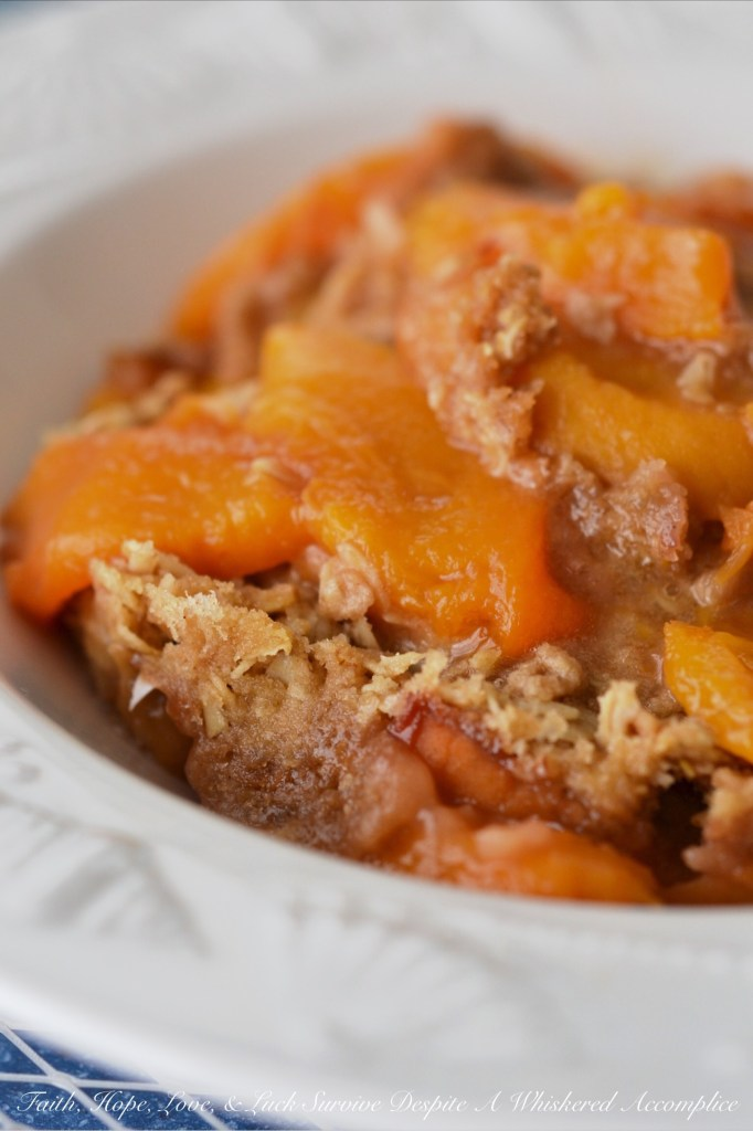 Malibu Crockpot Peach Beach Crisp | Faith, Hope, Love, and Luck Survive Despite a Whiskered Accomplice