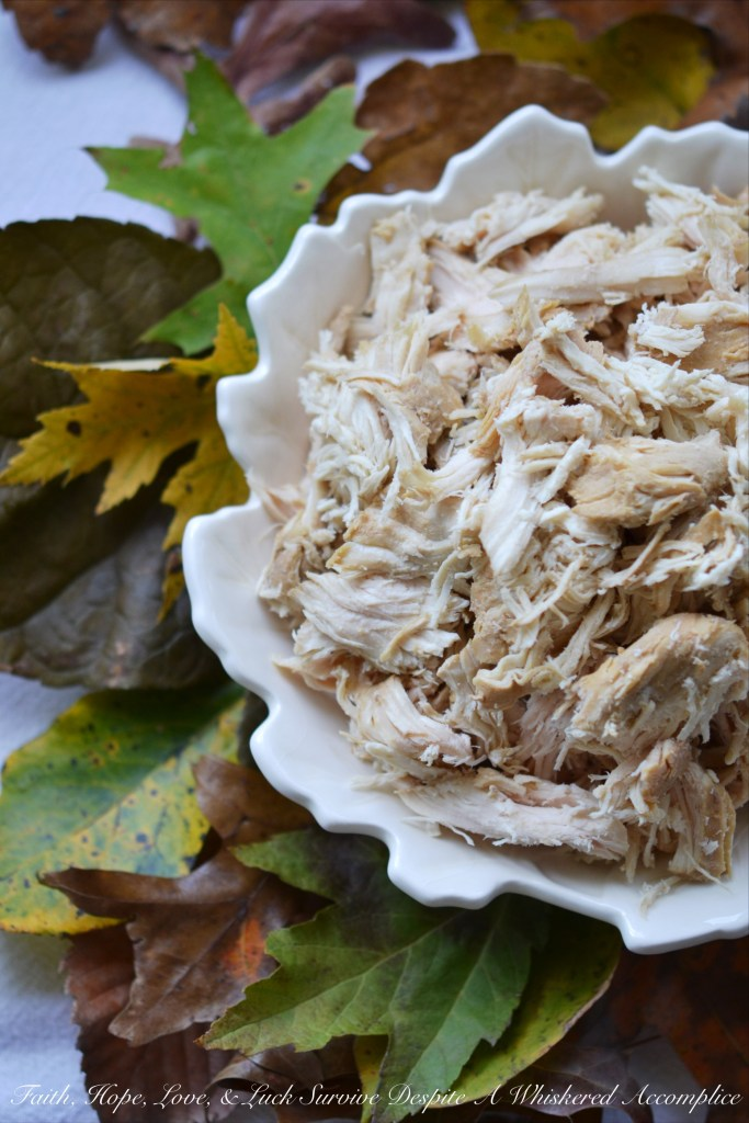 Autumn Crockpot Poached Chicken Breasts | Faith, Hope, Love, and Luck Survive Despite a Whiskered Accomplice