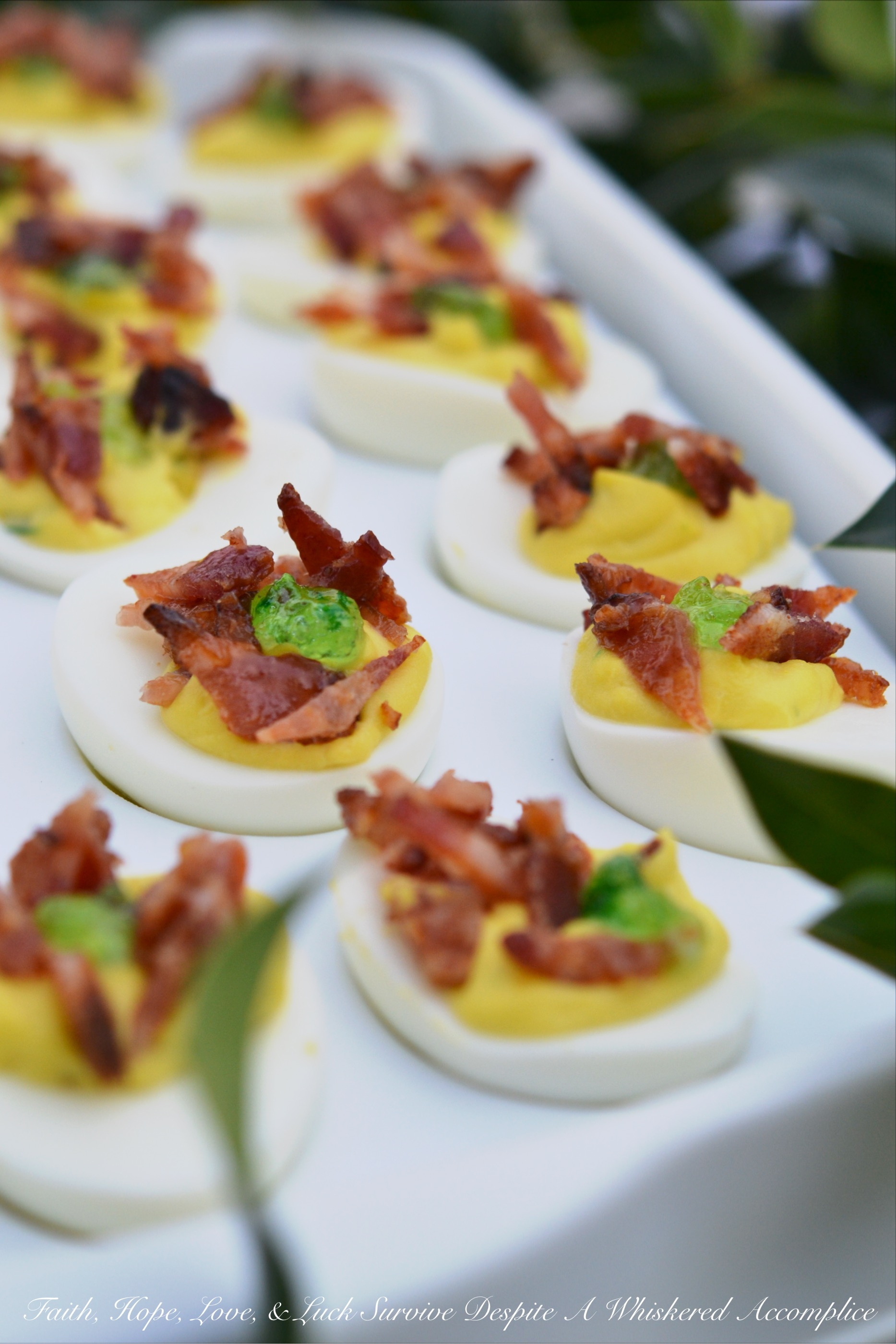 Candied Bacon Jalapeño Deviled Eggs