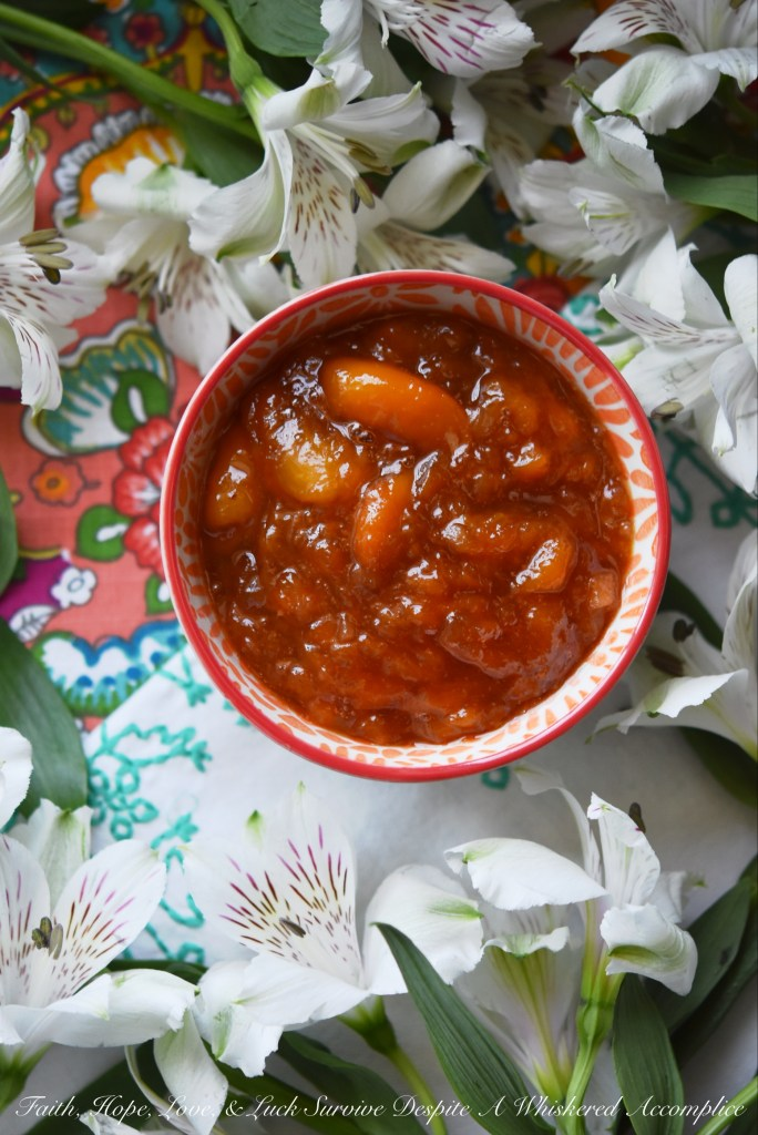 Finely diced crystallized ginger and frozen sliced peaches blend together with sugar, sea salt, and lemon juice in this small-batch sweet and spicy jam.