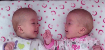 identical twins conversation