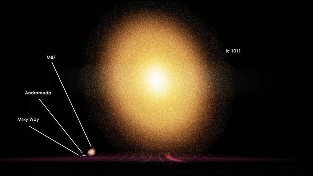 But even our galaxy is a little runt compared with some others. Here's the Milky Way compared to IC 1011, 350 million light years away from Earth: