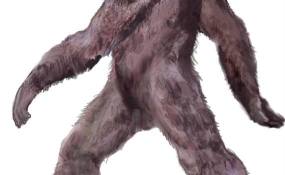 Bigfoot Sighting in Gardeau