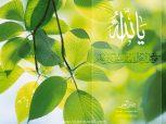 Islamic Wallpaper (20)