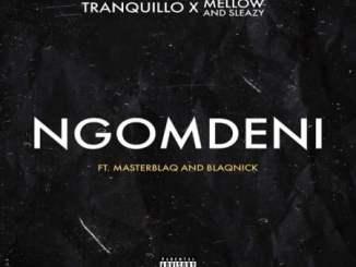 Tranquillo – Ngomdeni ft. Mellow, Sleazy & MasterBlaQ & Blaqnick