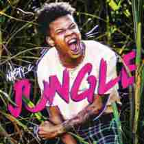 DOWNLOAD MP3: Nasty C Jungle Mp3 Download