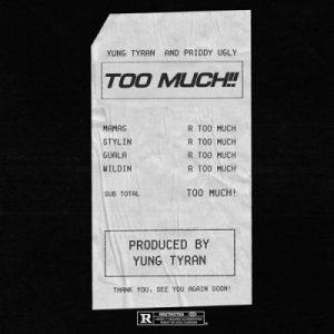 Download mp3: Yung Tyran ft Priddy Ugly Too Much fakaza 2018 2019 com music gqom amapiano afrohouse mp3 download