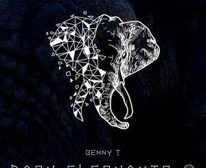 Benny T – Dark Elephants (Original Mix) Mp3 Download