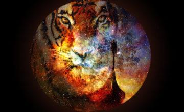 Echo Deep, Viiiictor May – Bayabaleka (Original Mix) Mp3 Download
