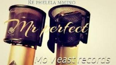 Mr Perfect & Hapas MusiQ – Who Is Mr Perfect (Gwam Mix) Mp3 Download