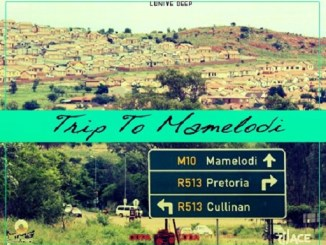 Lunive Deep – Trip to Mamelodi (DJ Ace Flavour) Mp3 Download