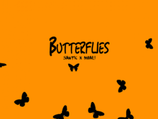 Santic – Butterflies Ft. Mbali Mp3 Download