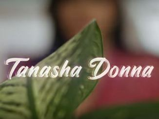 Tanasha Donna – La Vie Ft. Mbosso Fakaza 2020 download