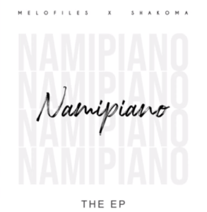 Download Mp3 Smallz – Everybody Say T (Namipiano Remix)
