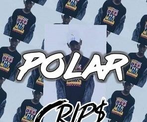 Download Mp3 Polar – Crips Freestyle