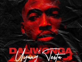 Download Ep: DaliWonga – Uyang'Testa Zip
