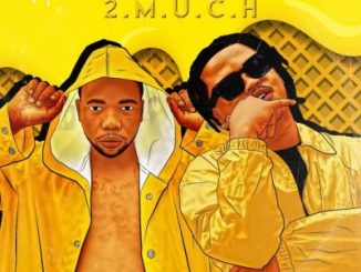 Download Mp3: Gobi Beast – 2 Much Ft. Focalistic
