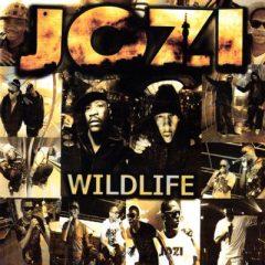 Download Mp3 Jozi – Gotta Keep It Going