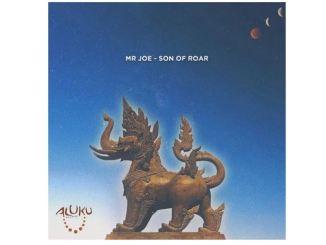 Mr Joe – Son Of Roar (Original Mix) Mp3 Download