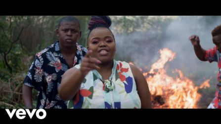 Video: Distruction Boyz - Ubumnandi Ft. DJ Tira, Dladla Mshunqisi & Feerless Boyz