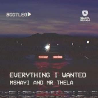 Mr Thela & Mshayi – Everything I Wanted (Bootleg)