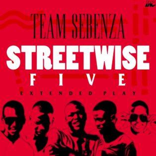 Team Sebenza – The Big Five