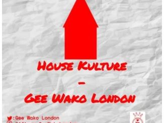 Gee Wako London – House Kulture Mp3 Download