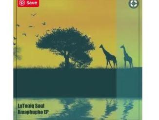 LuToniq Soul – Amaphupho Mp3 Download