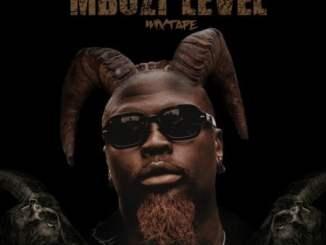 Stilo Magolide – Mbuzi Level Mixtape