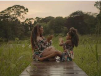 Brown Skin Girl Video By Beyonce Hits 7 Million Views