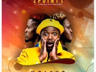 2Point1 – Moleko Ft. Butana & Lebo Molax Mp3 Download