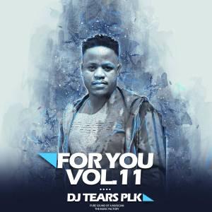 ALBUM: DJ Tears PLK – For You Vol.011