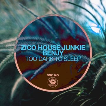 Zico House Junkie & Benjy – Too Dark To Sleep (Original Mix)