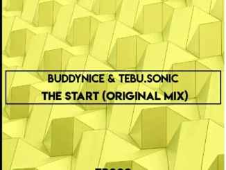 Buddynice – The Start