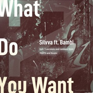 EP: Silvva & Bambi – What Do You Want