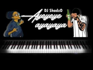 DJ ShadzO – Ayeyeye Ayayaya