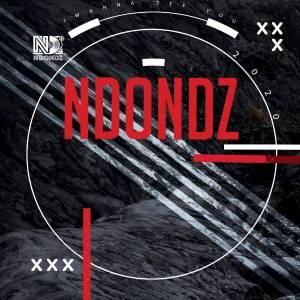 Ndondz & Couza – I Wanna See You Ft. Fako (Dustinho Healthy Mix)