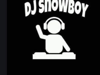 Dj Snowboy, Unexpected, Switch, mp3, download, datafilehost, fakaza, DJ Mix