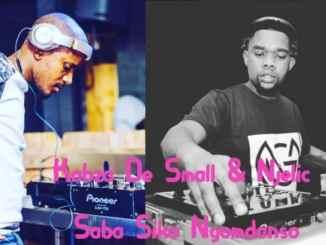 Kabza, De Small, Njelic, Saba, Sika, Ngomdanso, mp3, download, datafilehost, fakaza, DJ Mix